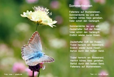 Sommergedichte Meine Gedichte Zur Sommerzeit